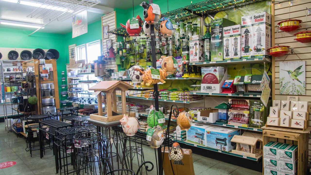 selection of bird feeders and accessories