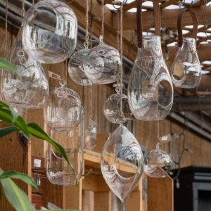 empty glass hanging terrariums