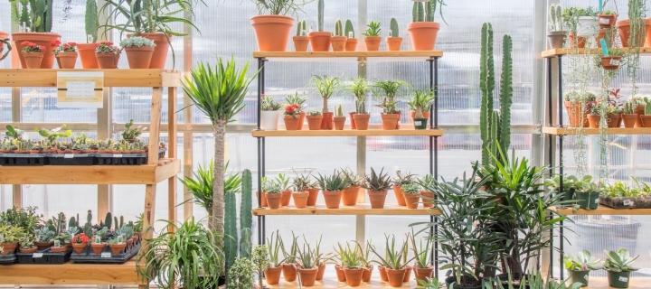 Join Our Garden Rewards Program